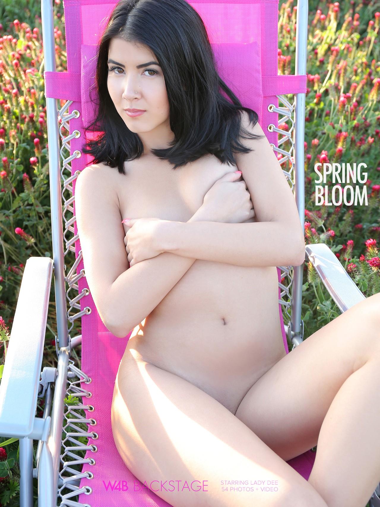 Lady Dee: Spring Bloom