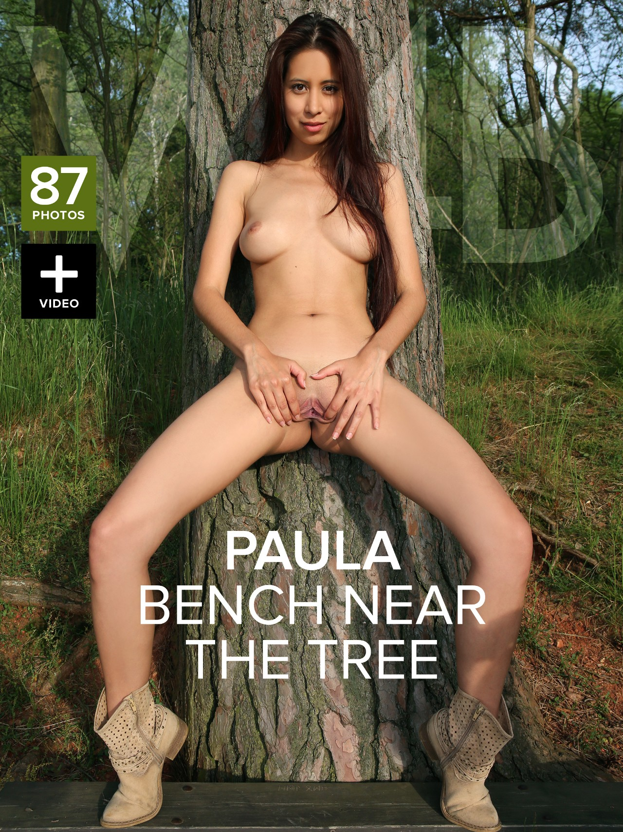 Paula Shy: Bench near the tree
