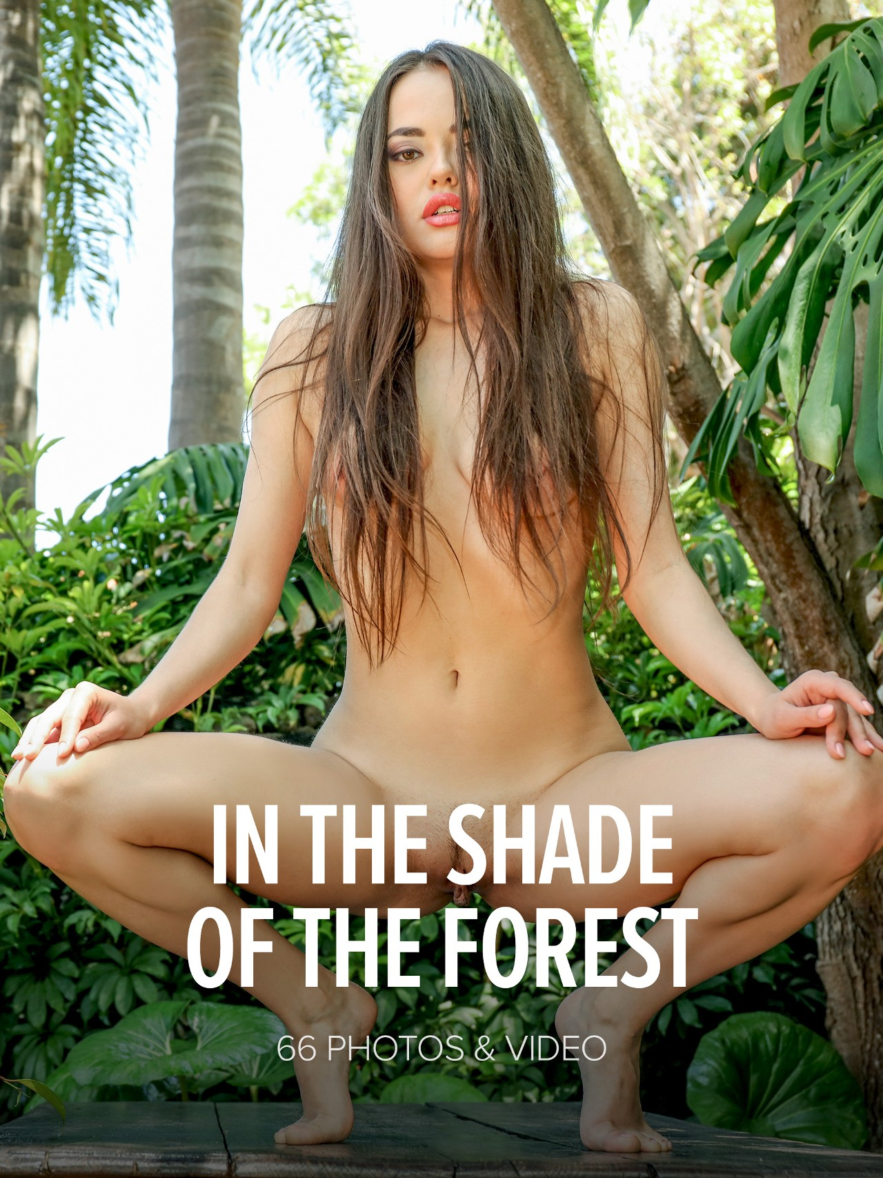 Li Moon: In The Shade Of The Forest