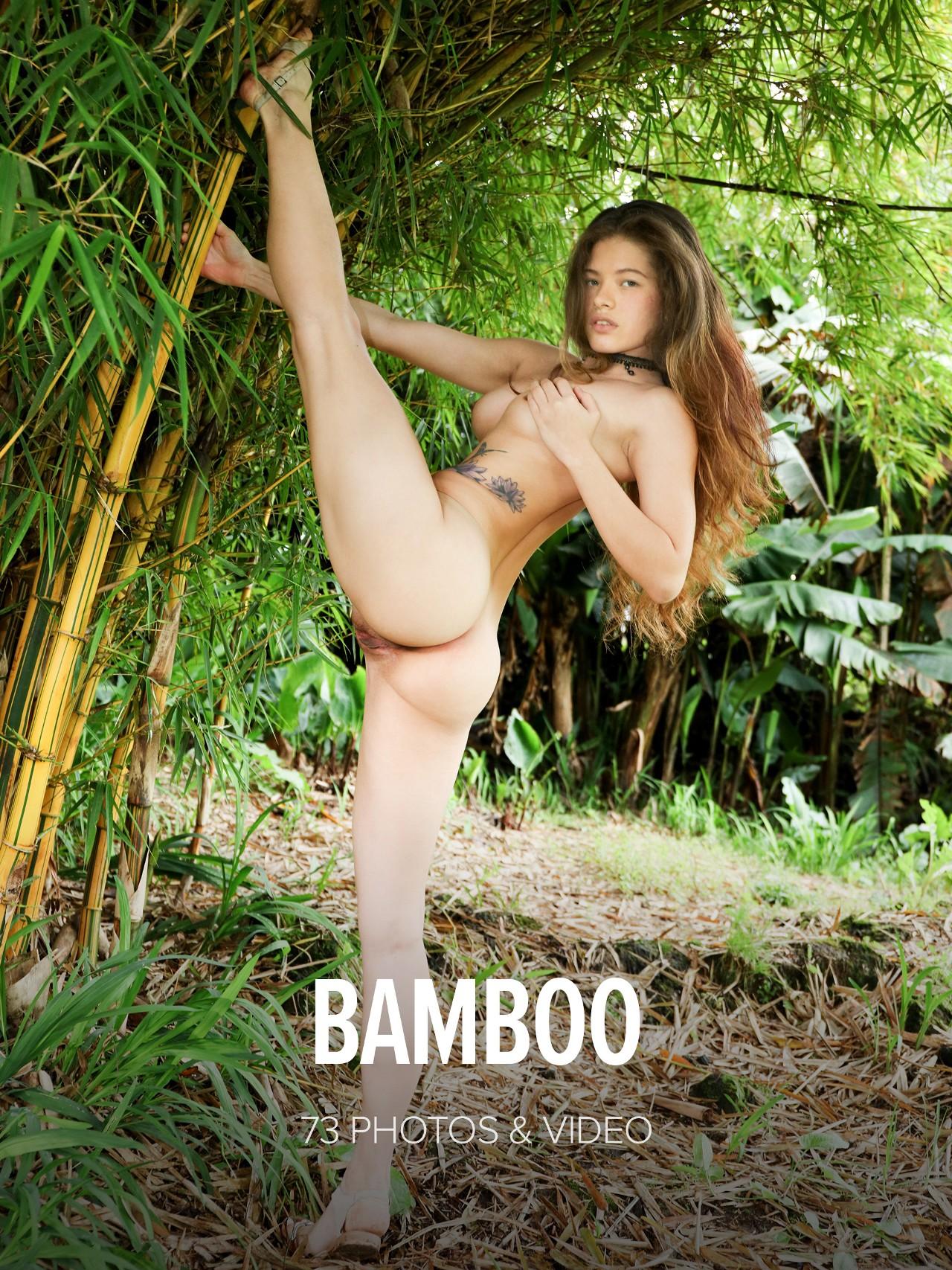 Irene Rouse: Bamboo